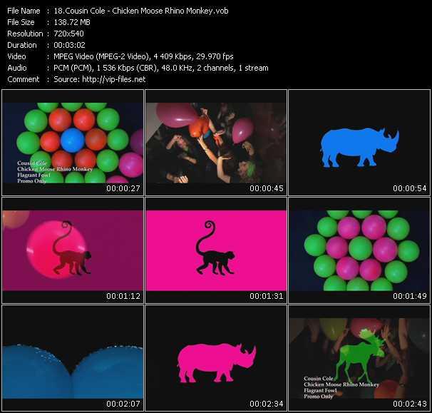 download Cousin Cole « Chicken Moose Rhino Monkey » video vob
