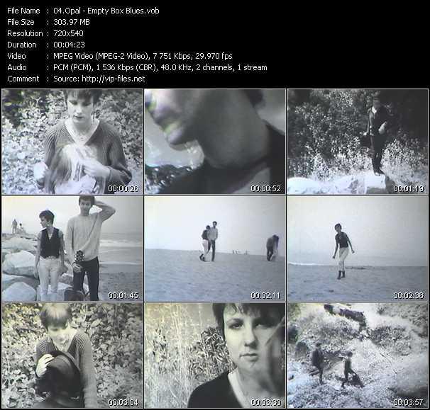 video Empty Box Blues screen