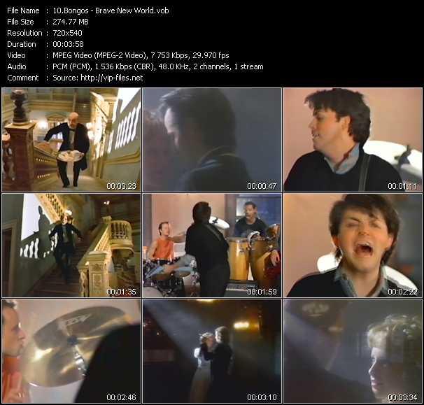 download Bongos « Brave New World » video vob