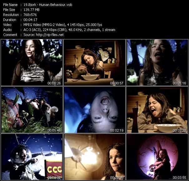 video Human Behaviour screen