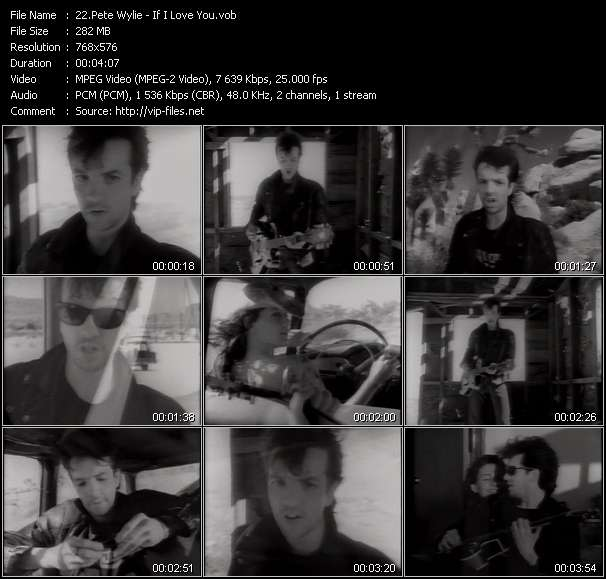 download Pete Wylie « If I Love You » video vob