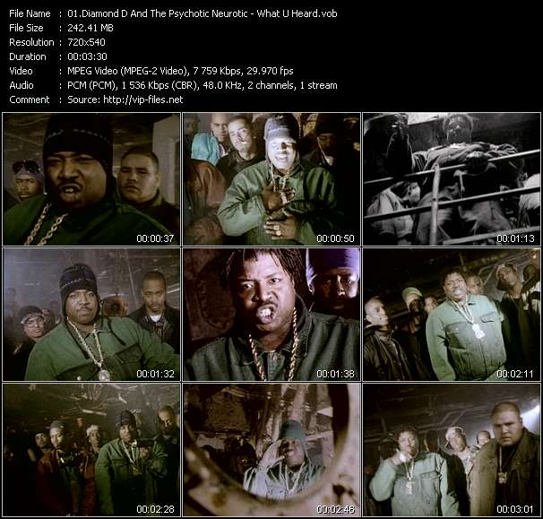 download Diamond D And The Psychotic Neurotic « What U Heard » video vob