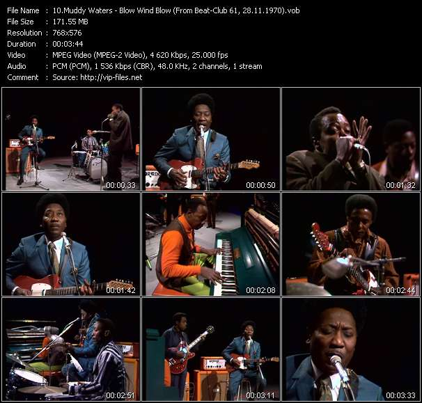 download Muddy Waters « Blow Wind Blow (From Beat-Club 61, 28.11.1970) » video vob