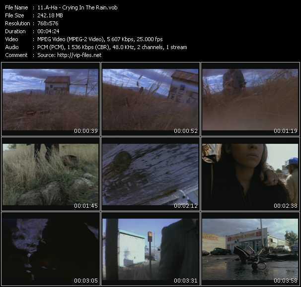 video Crying In The Rain screen