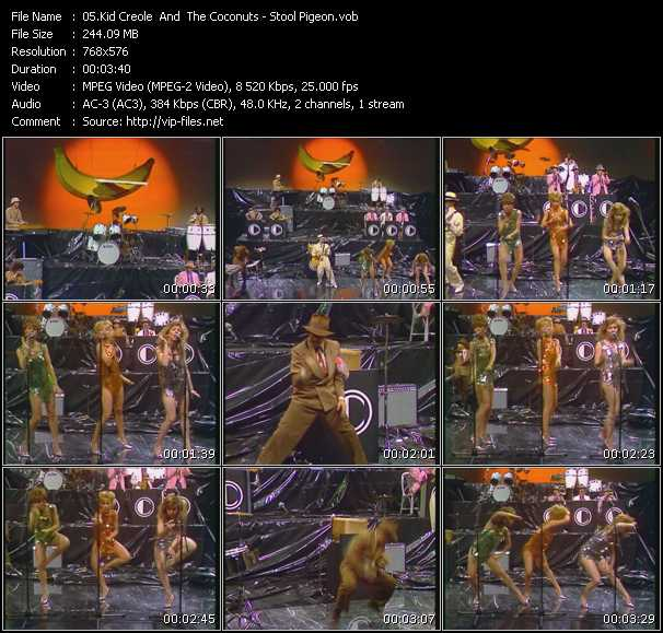 download Kid Creole And The Coconuts « Stool Pigeon (From Bananas) » video vob