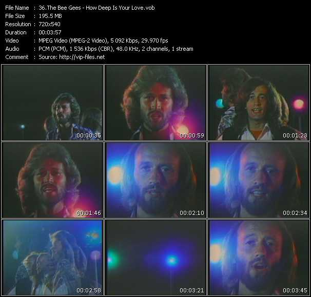 download Bee Gees « How Deep Is Your Love » video vob