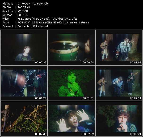 video Too Fake screen