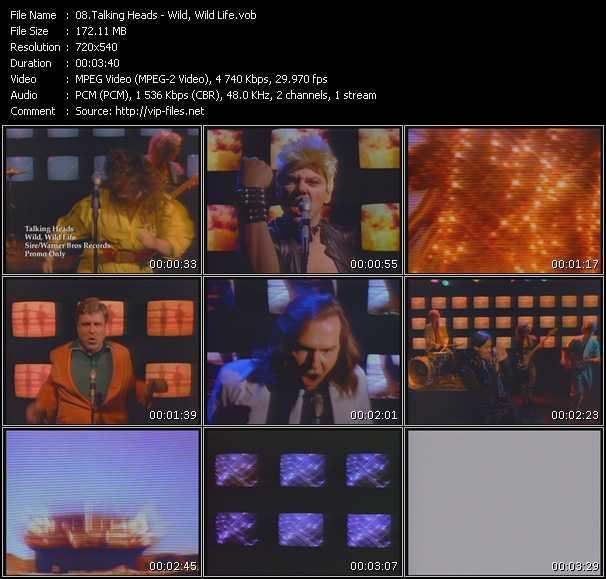video Wild, Wild Life screen