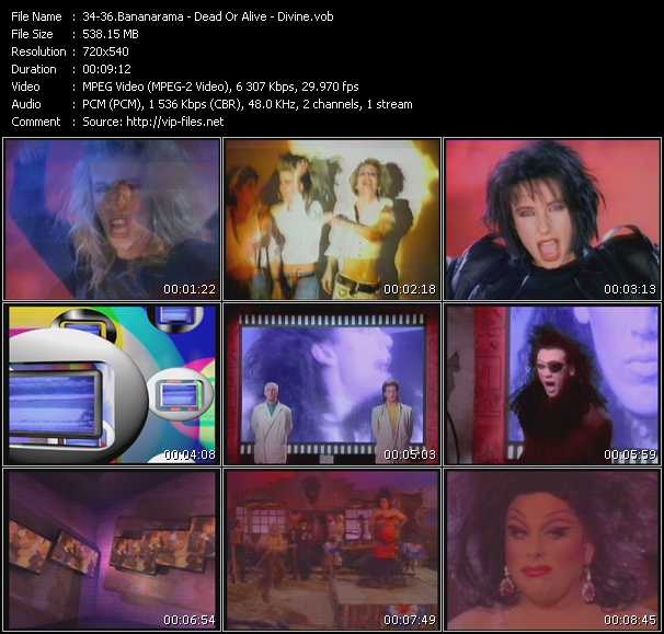 video Venus - Lover Come Back To Me - Walk Like A Man screen