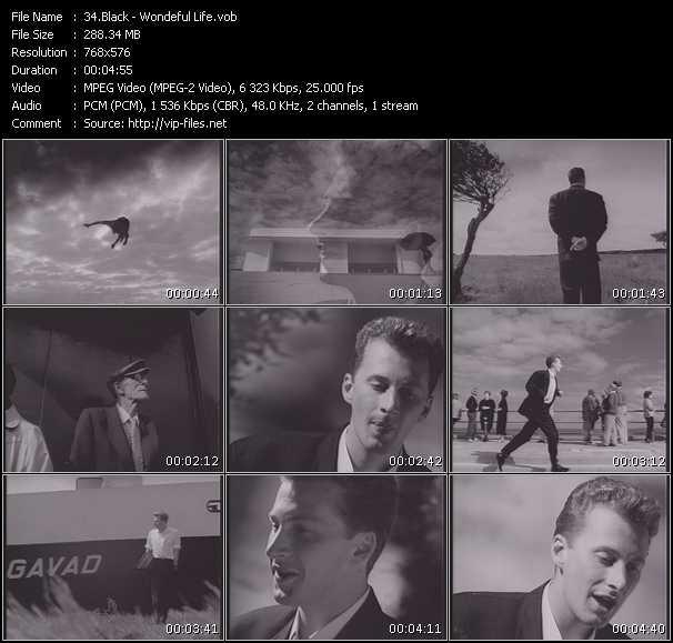 download Black « Wondeful Life » video vob