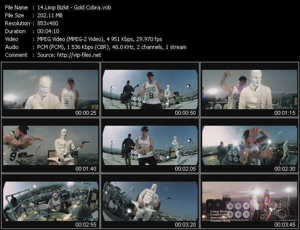 video Gold Cobra screen