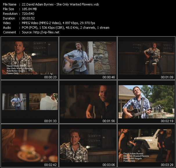 download David Adam Byrnes « She Only Wanted Flowers » video vob