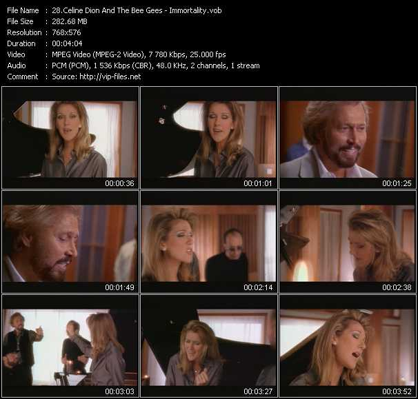 download Celine Dion And The Bee Gees « Immortality » video vob