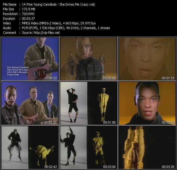 download Fine Young Cannibals « She Drives Me Crazy » video vob