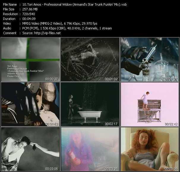 video Professional Widow (Armand's Star Trunk Funkin' Mix) screen