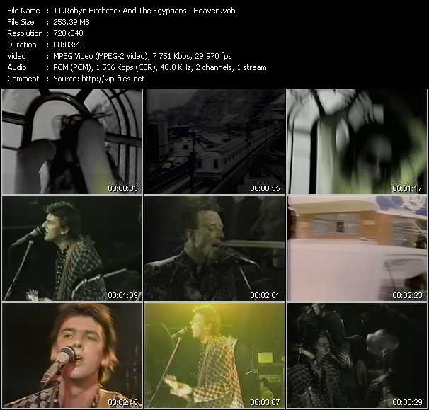 download Robyn Hitchcock And The Egyptians « Heaven » video vob