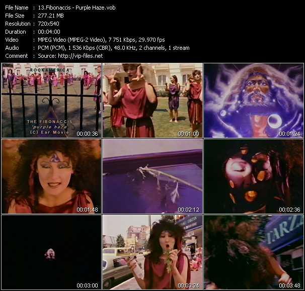 video Purple Haze screen
