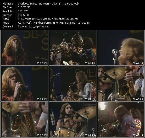 download Blood, Sweat And Tears « Down In The Flood (From Musikladen) » video vob