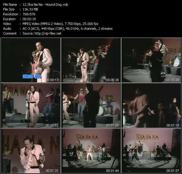 download Sha Na Na « Hound Dog (From Musikladen) » video vob