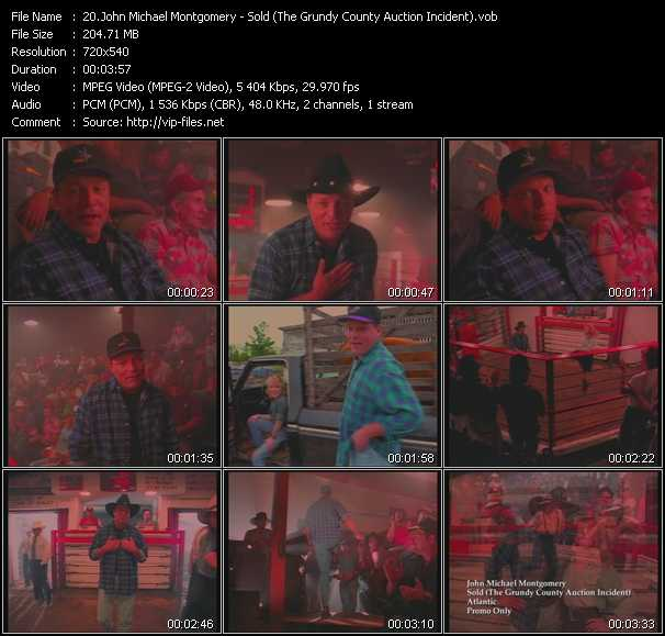video Sold (The Grundy County Auction Incident) screen
