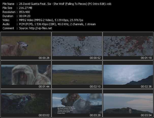 download David Guetta Feat. Sia « She Wolf (Falling To Pieces) (PO Intro Edit) » video vob