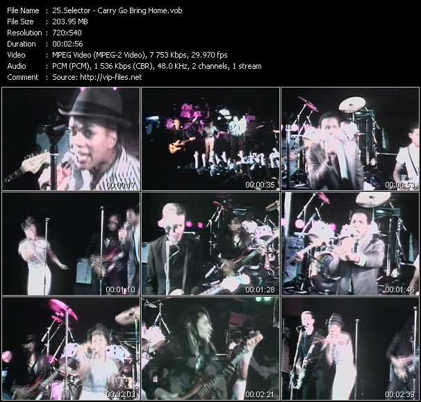 download Selecter « Carry Go Bring Home » video vob