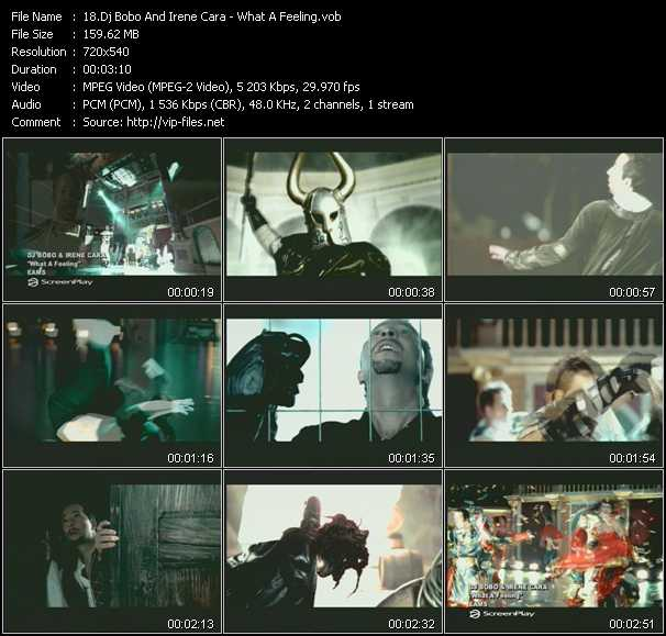 download Dj Bobo And Irene Cara « What A Feeling » video vob